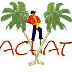 Bachata Musik